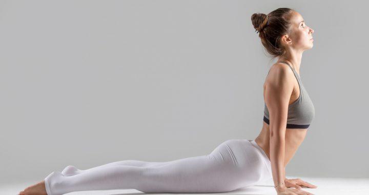 secretos del dharma yoga y sus posturas