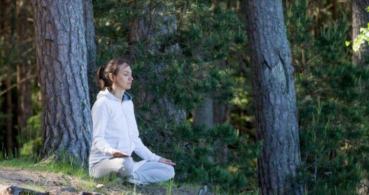 life of a yogi who lives in society